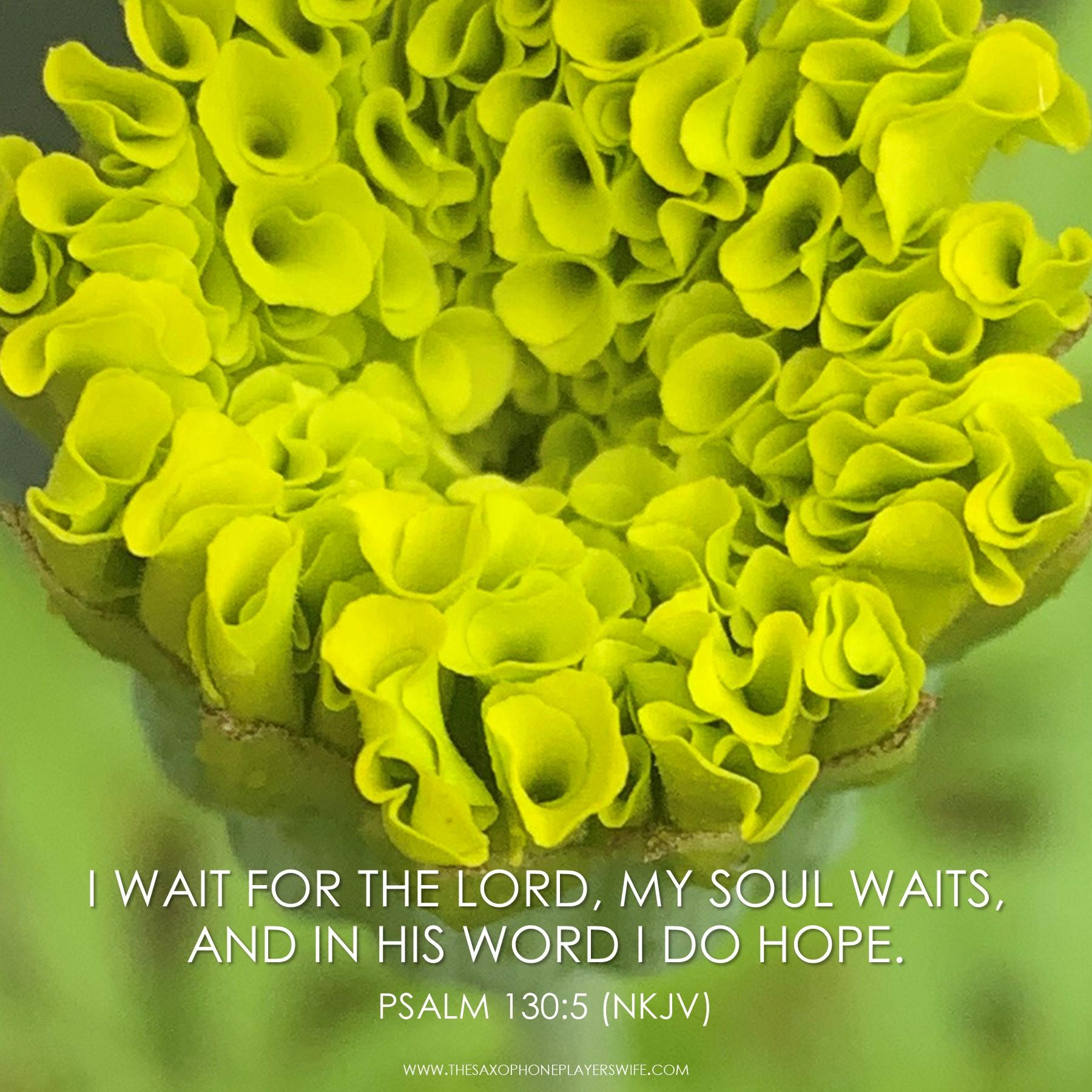 Psalm130_5
